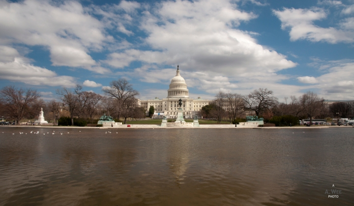 The National Mall in Washington and Library ofCongress