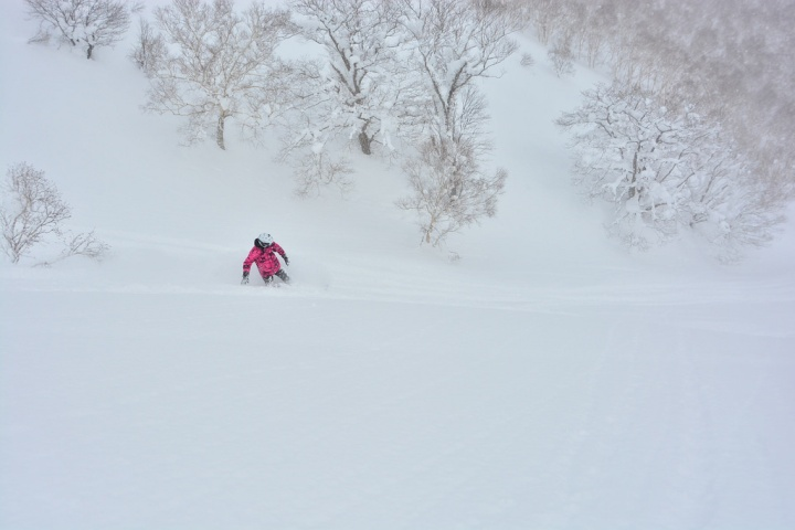 Cat-Skiing in Niseko – a SkiReview